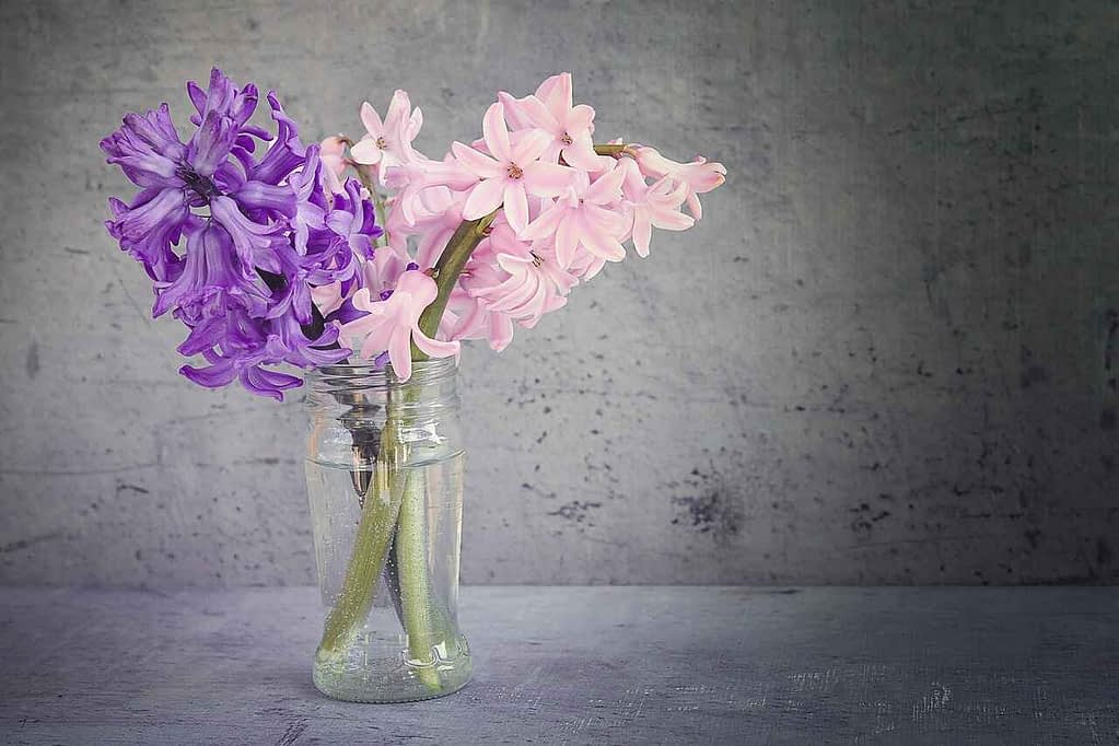 Fresh flower scent decor
