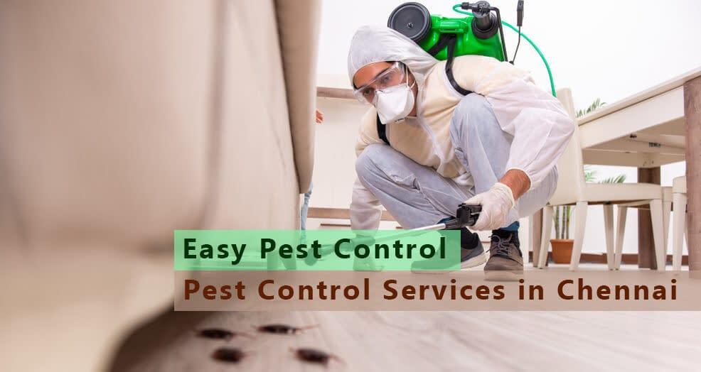 pest-control-in-chennai
