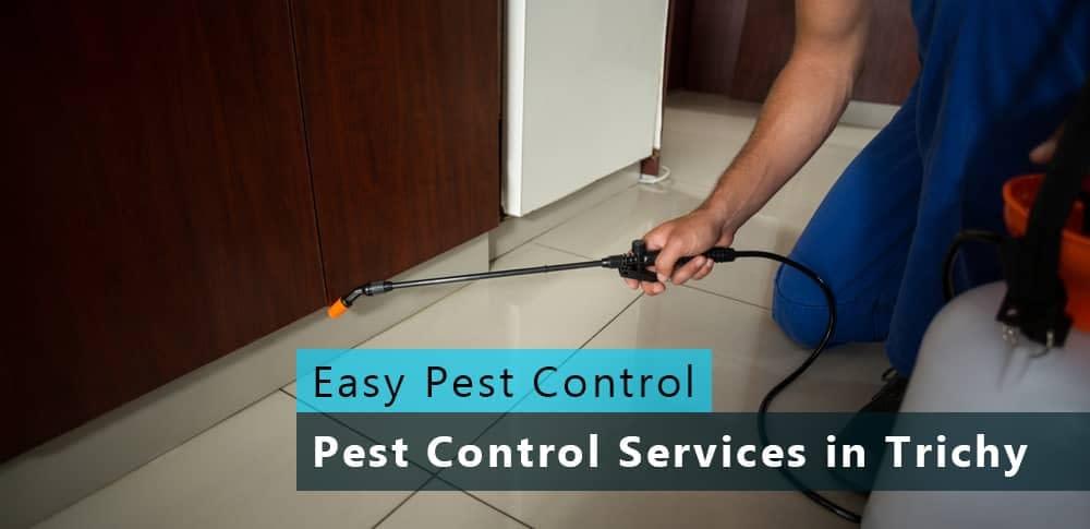 easy-pest-control-4